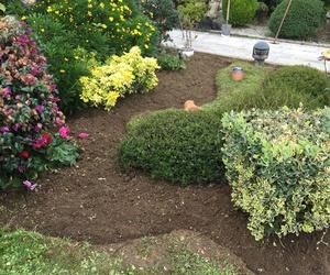 diseño y mantenimiento de jardines en Asturias