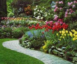 Galería de Jardines (diseño y mantenimiento) en Marcilla   Jardineria El Campillo
