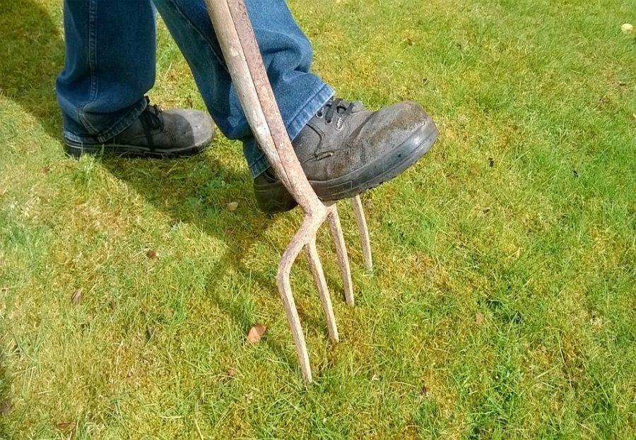 El mantenimiento de los jardines en verano