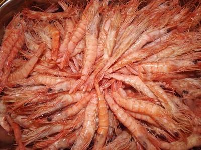 Todos los productos y servicios de Cocina marinera: Marucho