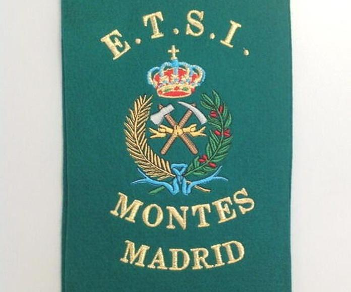 E.T.S.I. Montes de Madrid