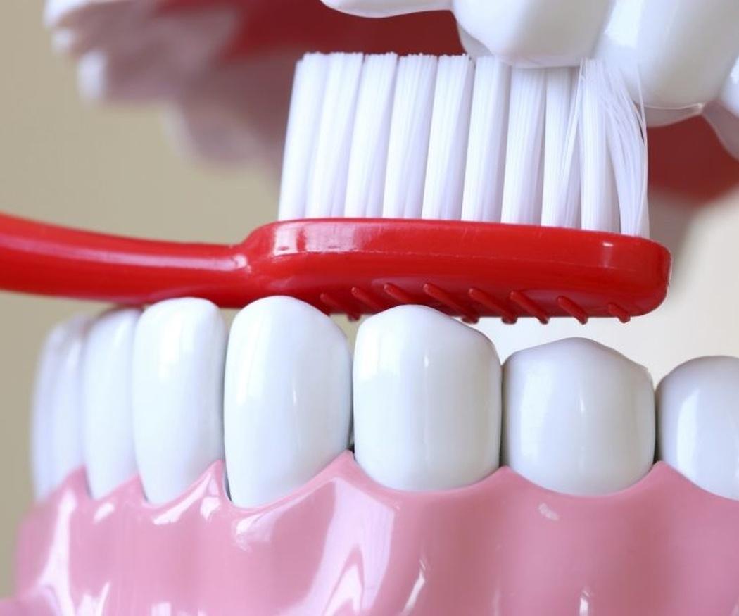 La constancia es la base de la salud dental