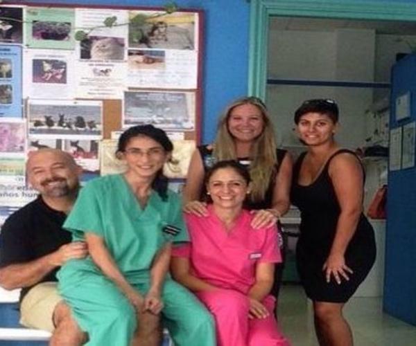 Veterinarios en Arrecife | Clínica Veterinaria Jameos