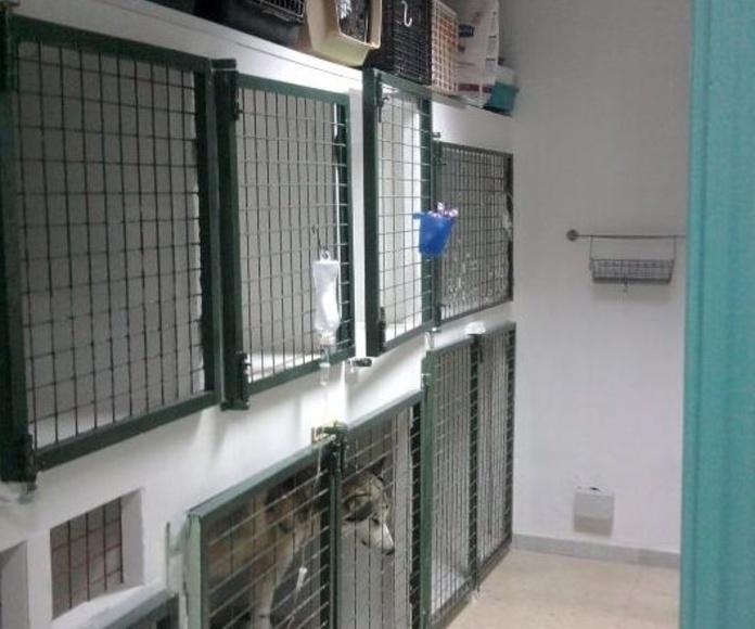 Sala de Hospitalización