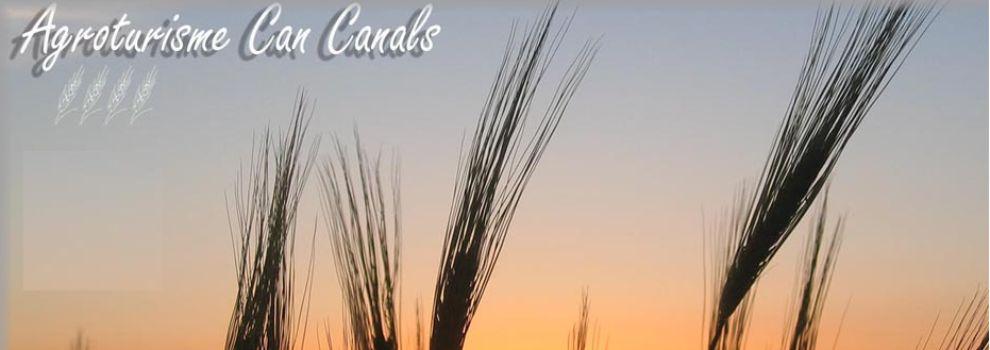 Hoteles rurales con spa en Mallorca
