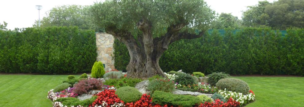 Construcción de jardines en Bizkaia | Jardinería Igle-Man