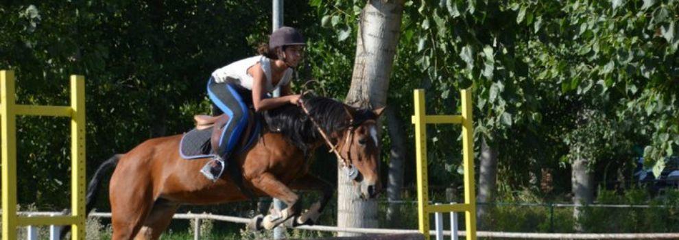 Actividades con caballos en Granada | Club Hípico de Cenes