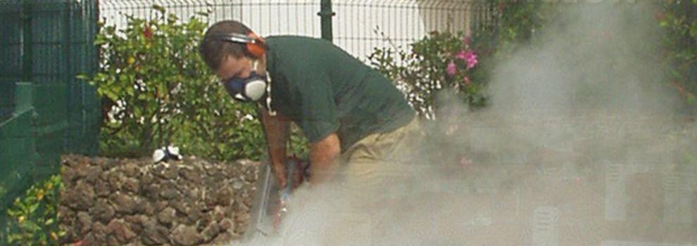Exterminador de plagas Las Palmas de Gran Canaria