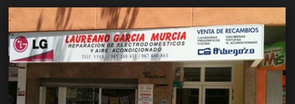 Repuestos de electrodomésticos en Albacete | Laureano García Murcia