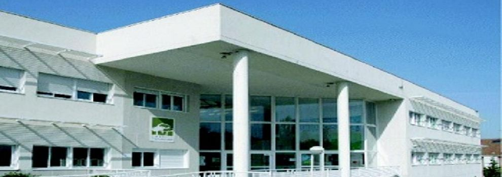 Colegios privados en Madrid | Colegio Tres Olivos