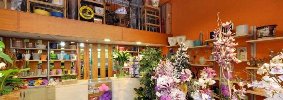 Env o de flores a domicilio en logro o florister a pothos for Decoracion logrono