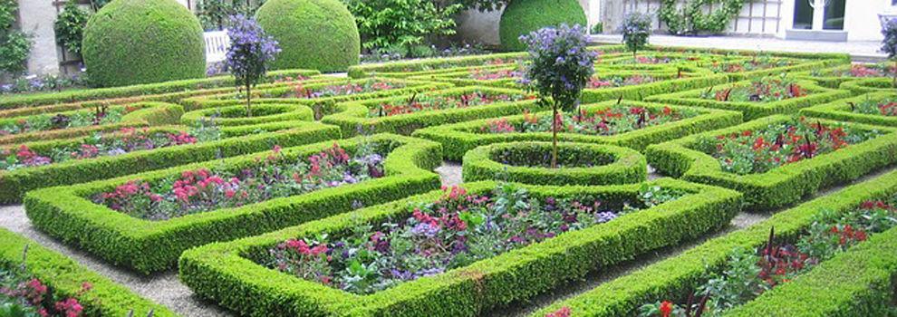 Empresas de jardiner a en huesca for Empresas de jardineria