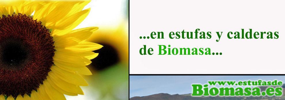 Energías renovables en Alpedrete | Estufas de Biomasa