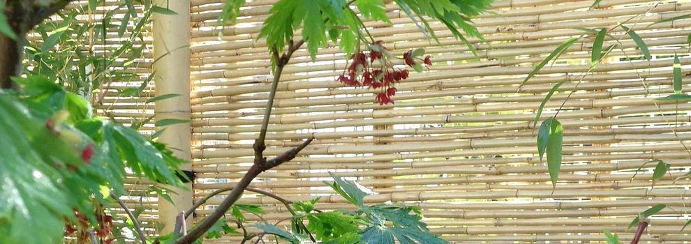 Jardines dise o y mantenimiento en colmenar viejo - Jardineria colmenar viejo ...