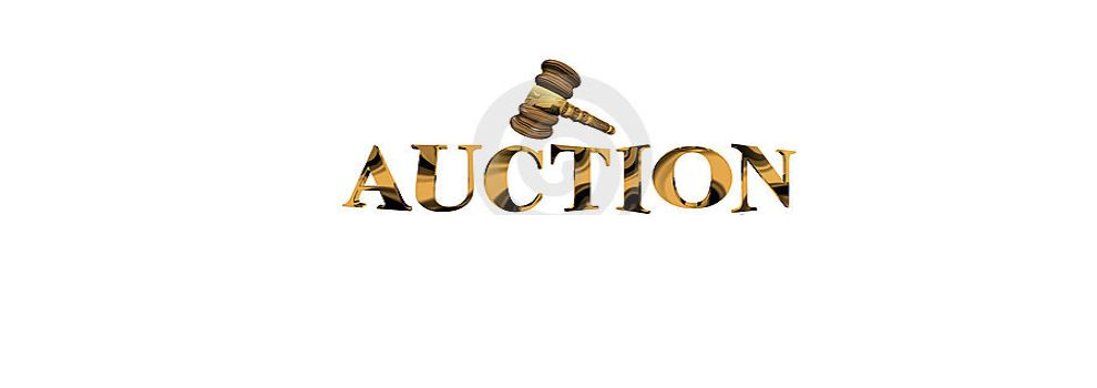 Auction houses in Mafra | Cronica Inicial Leilões