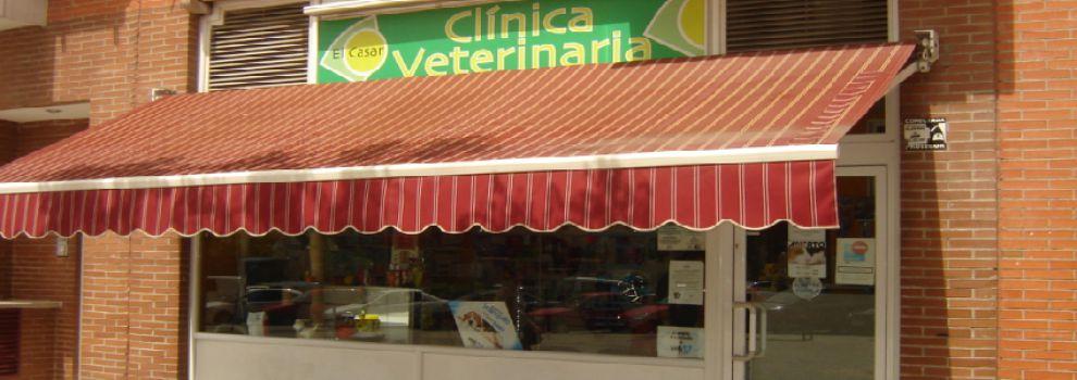 Veterinarios en Getafe   Clínica Veterinaria El Casar