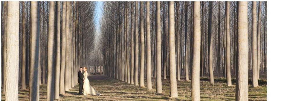 Fotografía (estudios) en Huesca | Vanity Estudio