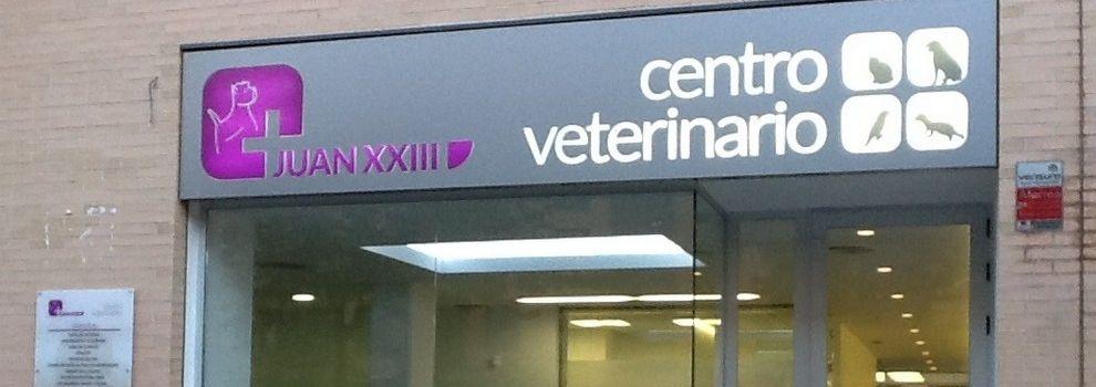 Veterinario 24h Valencia