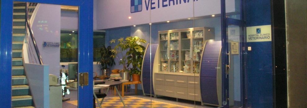 Veterinarios en Talavera de la Reina | Hospital Clínico Veterinario