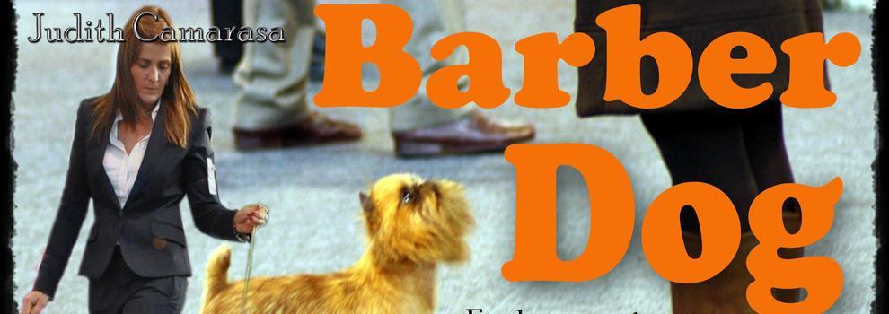 Peluquerías caninas en Sant Andreu de Llavaneres | Barber Dog