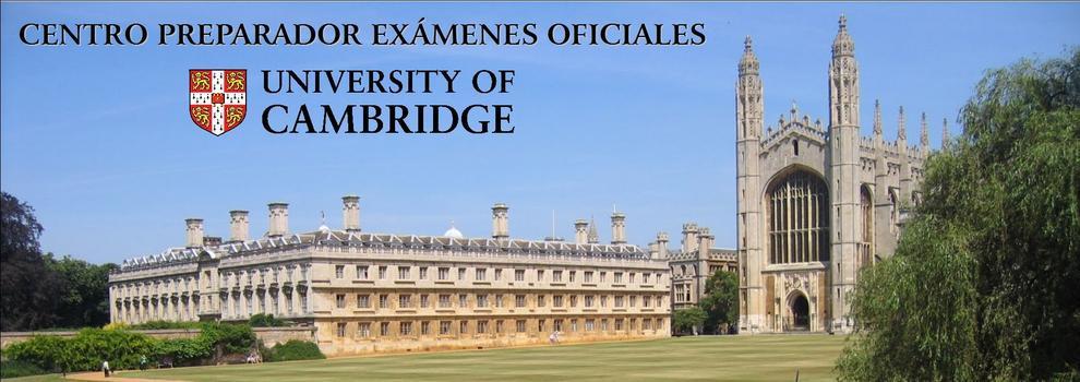 Dissertation Reading University