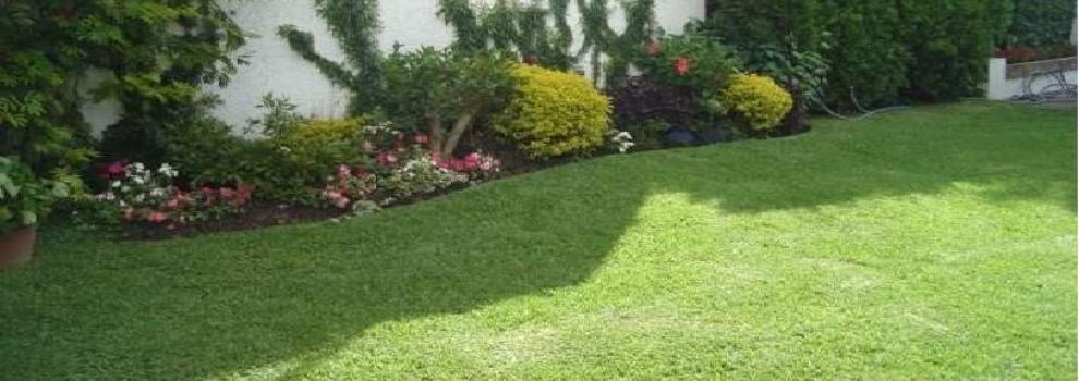 Mantenimiento de jardines en el escorial voip jardines for Mantenimiento de jardines