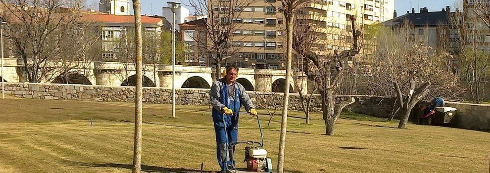 Empresa de limpieza en Palencia | Colimpa Limpiezas