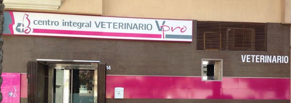 Veterinarios en Roquetas de Mar | Centro Integral Veterinario VPRO