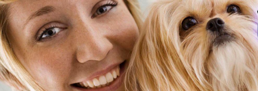 Peluquerías caninas en Catarroja | Itacan Peluquería Canina