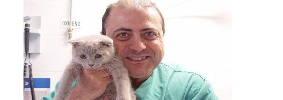 Clínica veterinaria en Soria