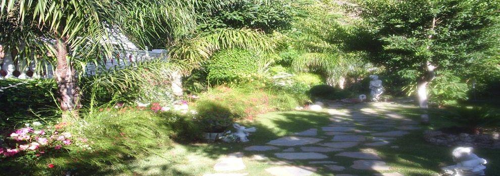Empresas de jardineria malaga plante verde for Empresas de jardineria