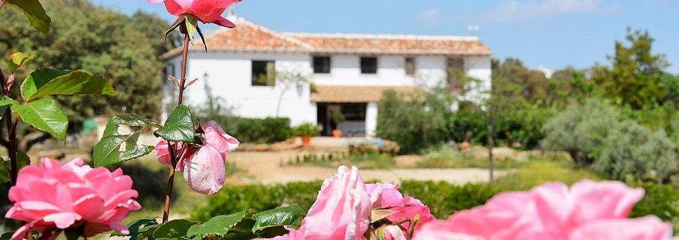 Organización de bodas en Málaga | Finca La Carraca