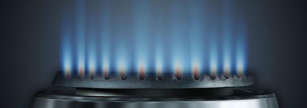 Instalador autorizado de gas Getafe