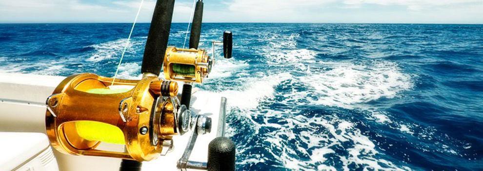 Náutica (embarcaciones y accesorios) en Vigo   Efectos Navales J. Betanzos