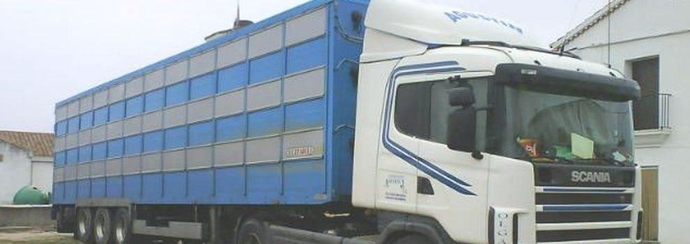 Transportes especiales en Valdecarros | Transporte de Ganado Agustín J.