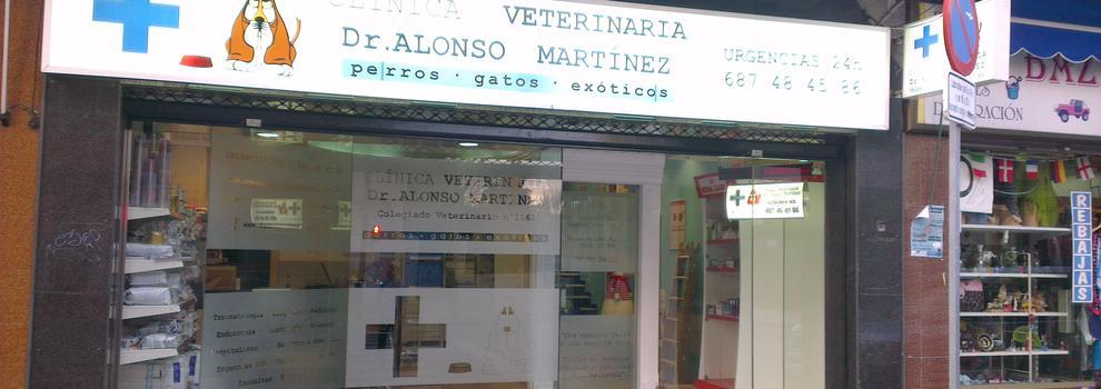 Veterinarios animales exóticos de Málaga | Clínica Dr. Alonso Martínez