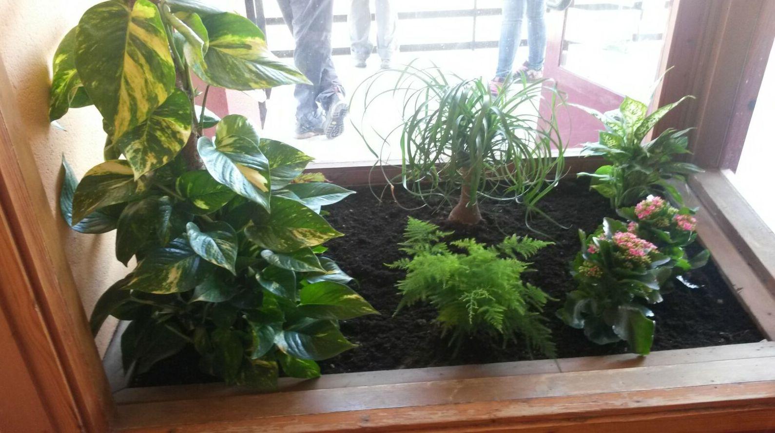Jardinería IGLE-MAN, Bizkaia