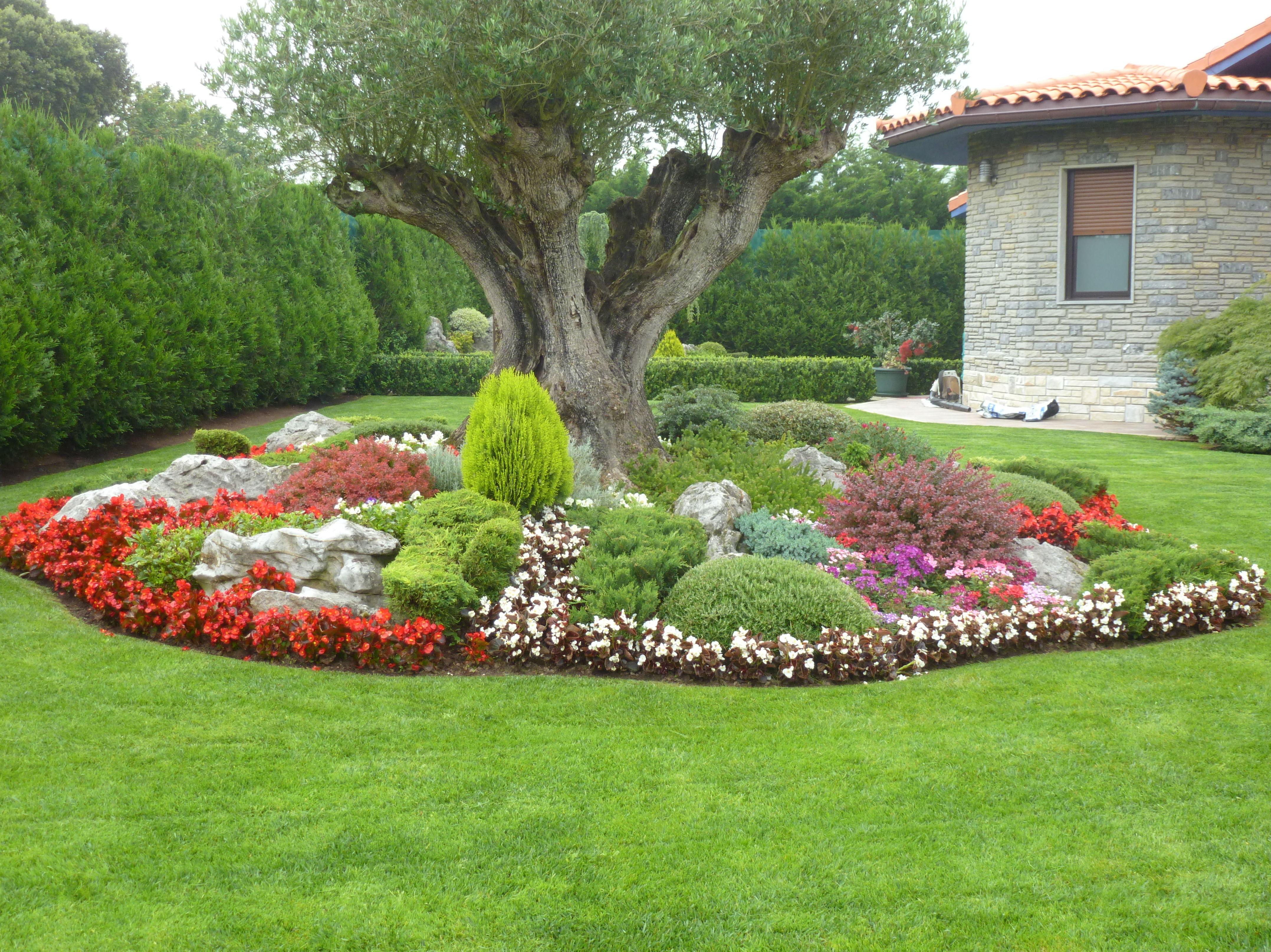 Foto 27 de dise o y mantenimiento de jardines en muskiz for Diseno de jardines fotos