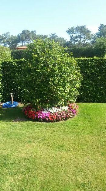 Jardinero en Bilbao
