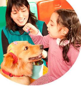 Curso de técnico en intervención asistida con animales en Bilbao