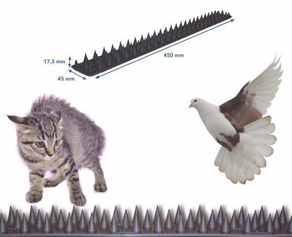 Pinchos anti-gatos