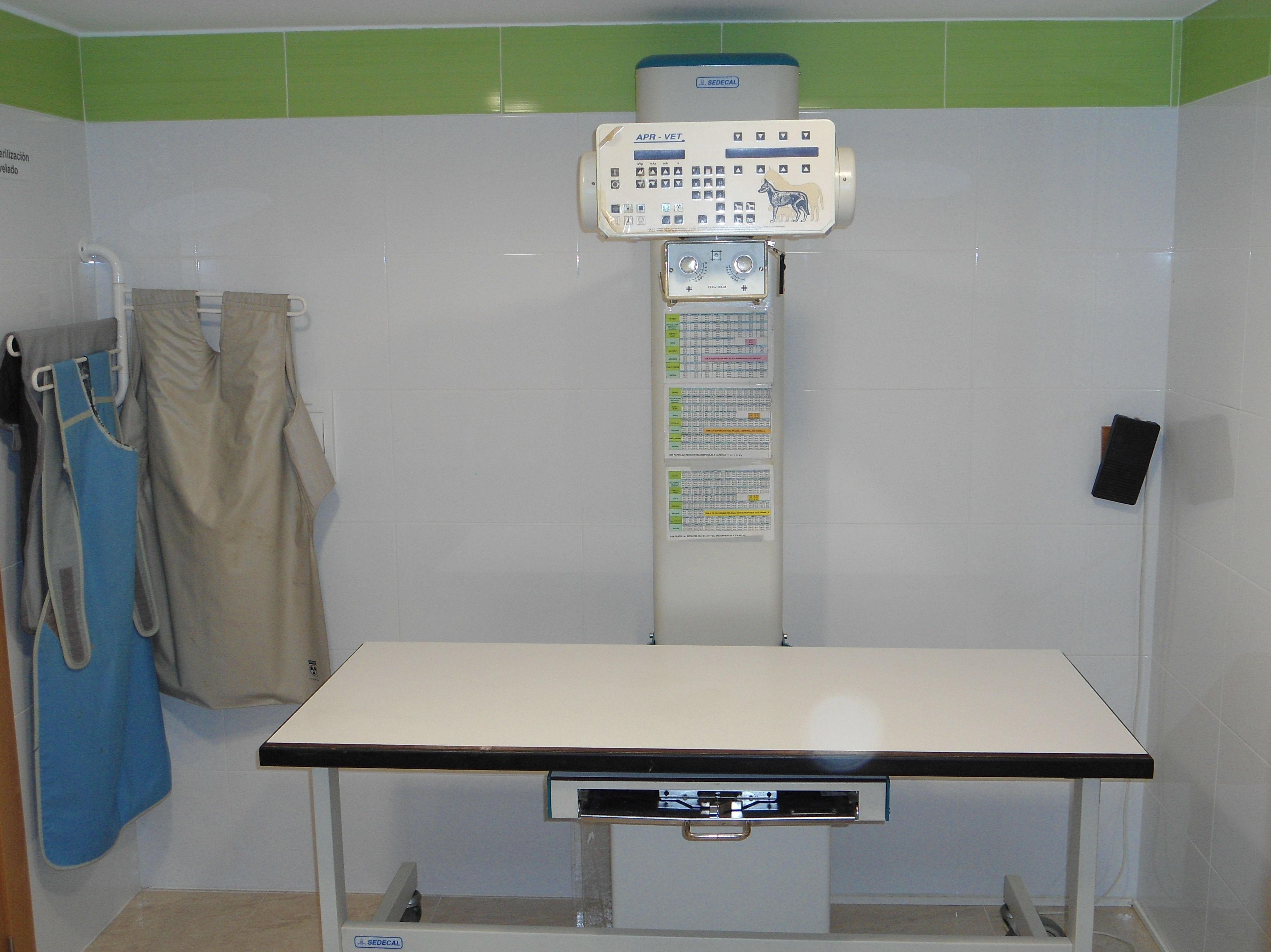 Foto 5 de Veterinarios en El Palmar | Cliper's Clínica Veterinaria