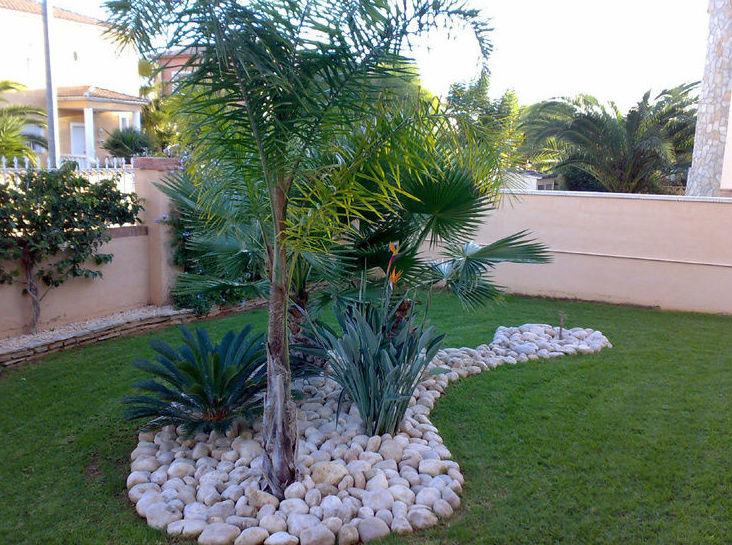 Necesita una empresa seria de dise o de jardines en valencia for Modelos de jardines sencillos