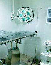 Cirugía veterinaria en Girona