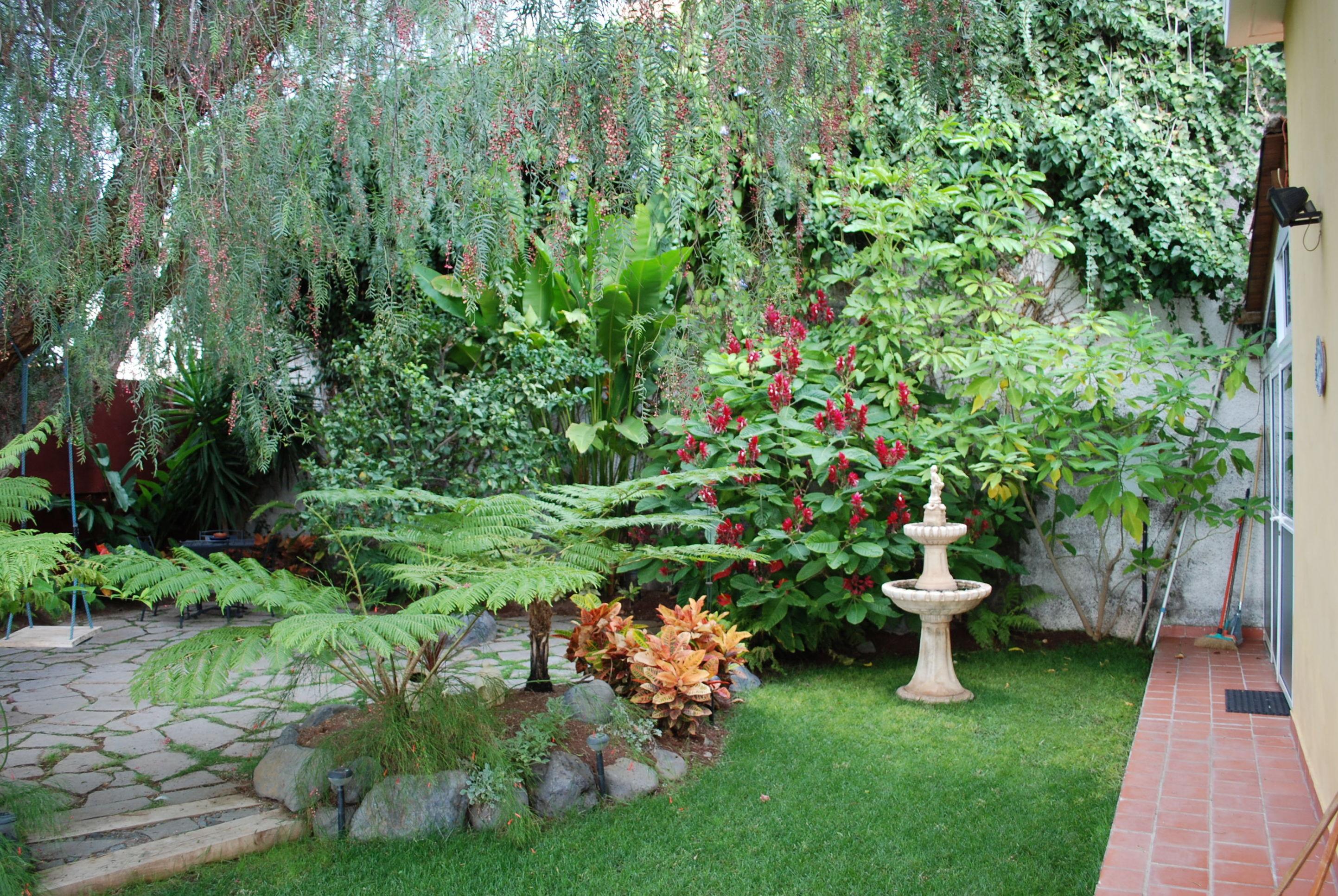 Dise o y construcci n de jardines productos y servicios for Jardines 7 islas