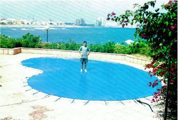 Carpas toldos y cubiertas for Carpas para piscinas