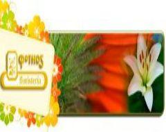Flores día de la madre Logroño