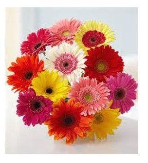 Bouquet de gerberas: Productos de Floristería Pothos