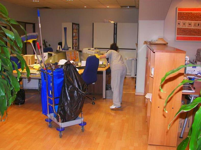 Limpieza de empresas madrid for Empresas limpieza hogar madrid
