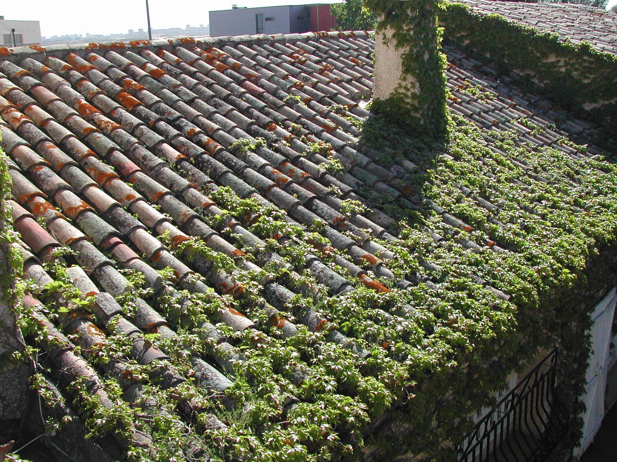 Foto 3 de cubiertas y tejados en madrid obras y tejados - Cubiertas y tejados ...
